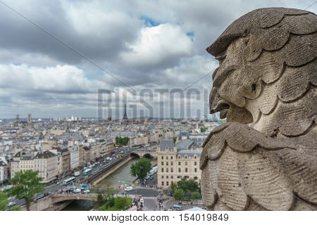 Cloudy day and Gargoyle overlooking blurred Paris from Notre Dame