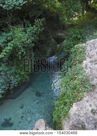 cascada de agua con abundante vegetación y manantial