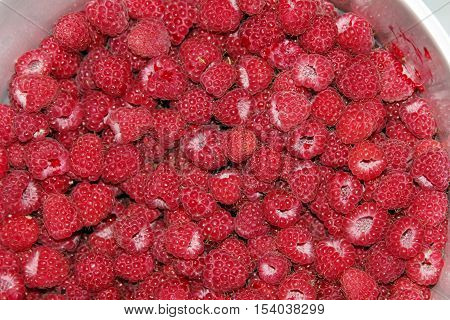 freshly picked raspberries background close up .