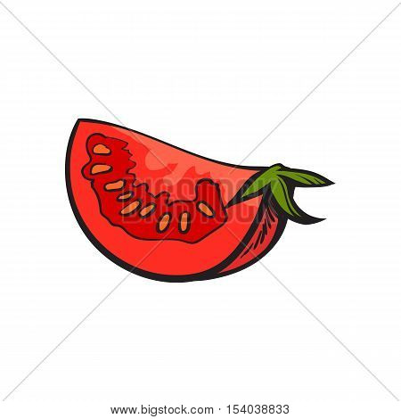 Sketch style drawing of ripe red tomato slice, vector illustration isolated on white background. Quarter of ripe tomato, side view, hand drawn illustration