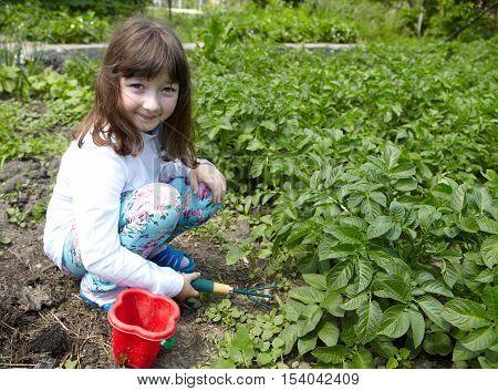 The Little Girl In The Vegetable Garden