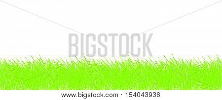 Grass border frame Grass vector seamless frame border Grass texture seamless Grass background Grass frame Grass vector