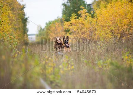 Attractive young woman walking wuth her dog German shepherd at autumn forest, near rail way - wide angle, outdoor