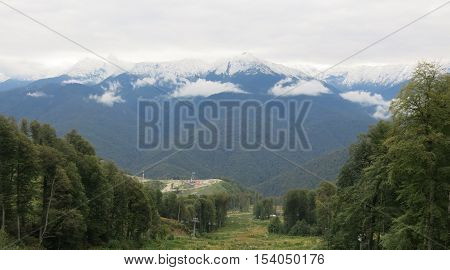 snow-capped peaks the forest on a mountain