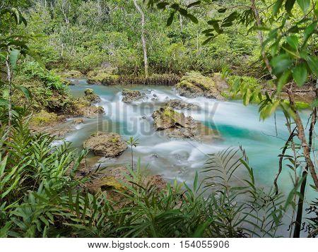 Green water lakes river waterfall with root tree at Tha Pom Klong Song Nam, Krabi, Thailand
