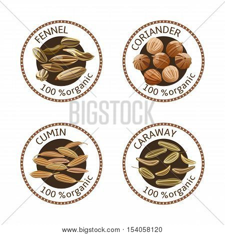 Set of herbs labels. 100 organic. Spice collection. Vector illustration. Fennel coriander caraway cumin. Brown stamps
