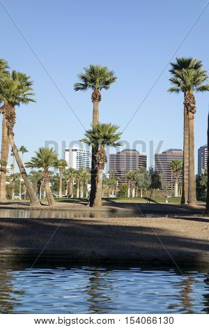 Phoenix downtown as seen across the lake in Encanto Park Arizona; Copyspace