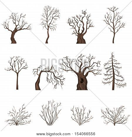 Vector Set Of Cartoon Bare Trees And Shrubs