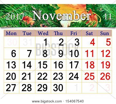 calendar for November 2016 with the ribbon of yellow dry leaf on the evergreen spruce