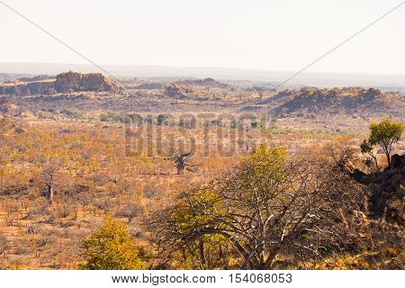 The Desert Landscape Of Mapungubwe National Park, Low Key But Majestic Travel Destination In South A
