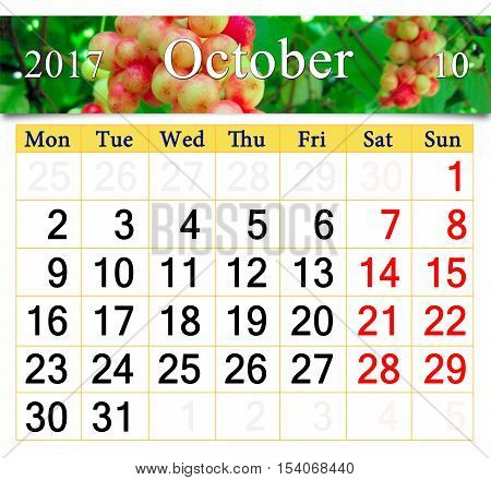 calendar for October 2017 with the ribbon of branch of red ripe schisandra