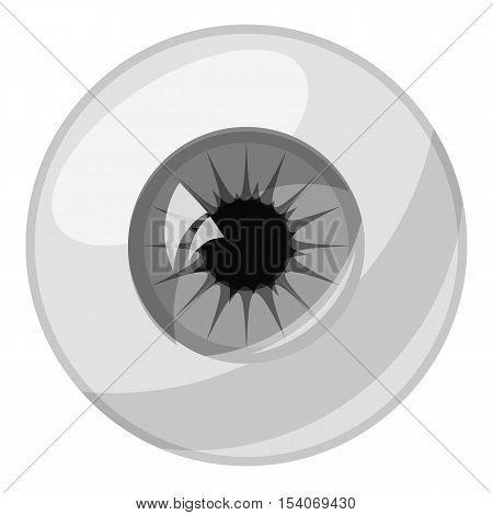 Human eye ball icon. Gray monochrome illustration of human eye ball vector icon for web