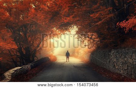 Mystical autumn red forest with silhouette of a man on the road in fog. Fall woods. Landscape with man trees road orange and red foliage and yellow fog. Travel. Autumn background. Magical forest