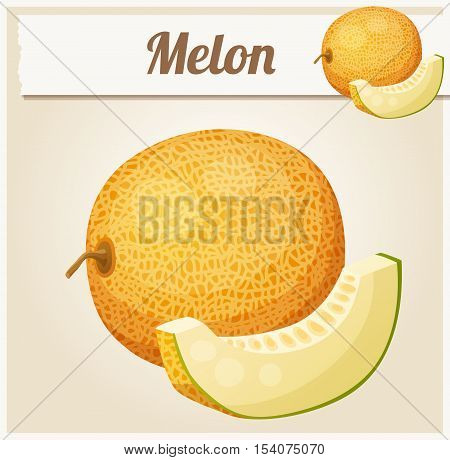 Melon. Cartoon vector icon. Series of food and drink and ingredients for cooking.