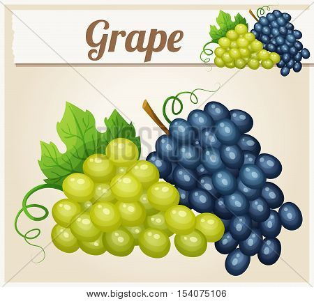 White and blue grape bunches. Cartoon vector icon. Series of food and drink and ingredients for cooking.