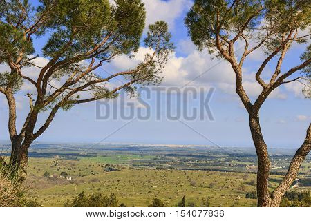 Alta Murgia National Park: panoramic view. - (Apulia) ITALY-Hilly spring: panorama of the Murgia plateau from Castel del Monte; in the background the city of Andria and Barletta.
