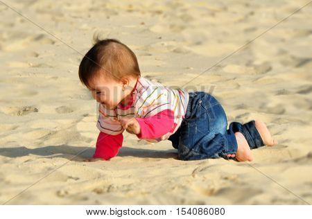 A baby crowl on a sandy beach.