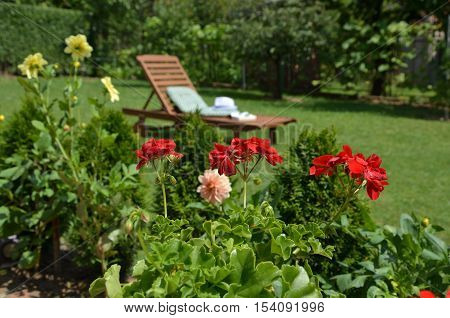 Garden Flowers And Easy Chair