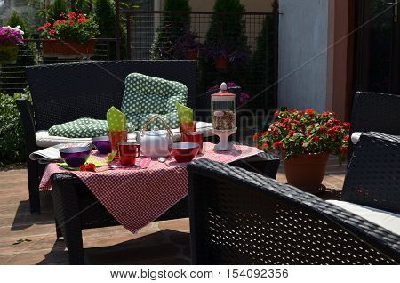 Colorful Dishes In A Backyard