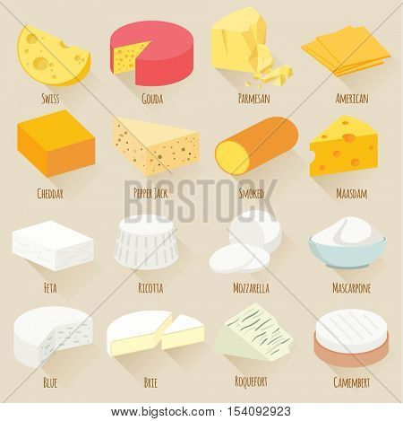 Popular kind of cheese. Flat design vector icon set.