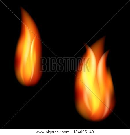 Burning fire flames on black background vector