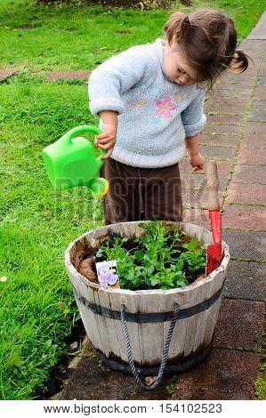 Little girl gardening - planting a flower in the home garden.