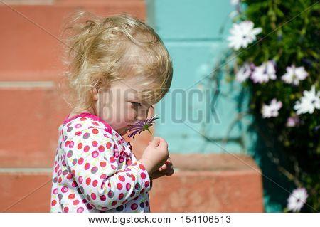 Little blond girl smell fresh flower in spring season.