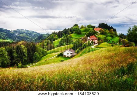 Beautiful hill landscape with houses and fir trees. Springtime in black forest schwarzwald Germany