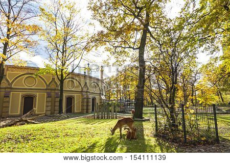 Berlin Zoological Garden
