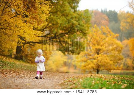 Adorable Toddler Girl Having Fun On Autumn Day