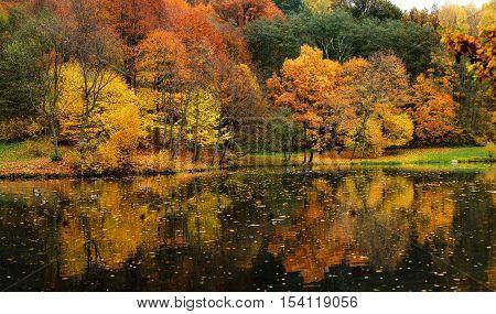 Idyllic autumn scenery in Lithuania on autumn day