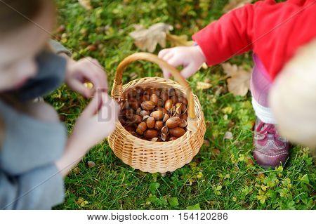 Little Girls Gathering Acorns On Autumn Day