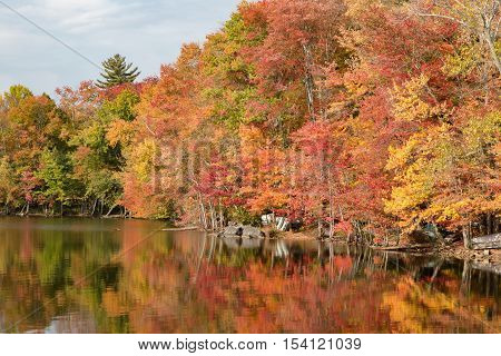 Autumn view of trees at waters edge with row boats parked underneath.