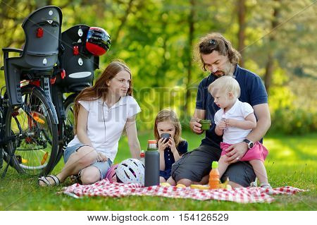 Happy Family Of Four Having A Picnic