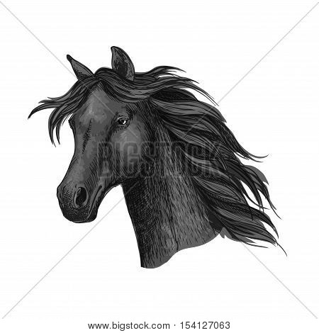 Black raven horse head portrait. Ink dark mustang with beautiful black mane waving in wind. Vector label for sport team badge, mascot, horse race emblem