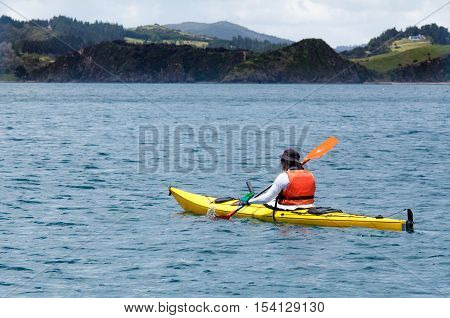 Man rows a yellow sea kayak in the bay of Island New Zealand. Very popular travel destination of NZ