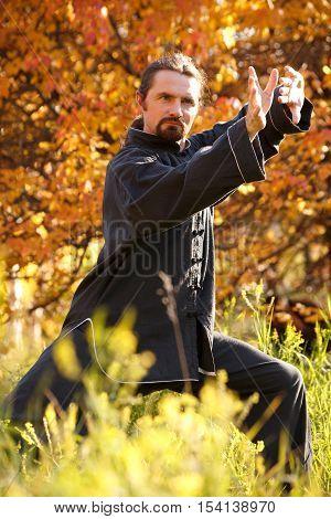 Adult man practicing Taijiquan in autumn park