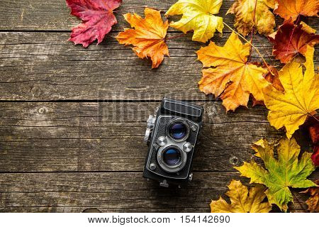 Vintage analogue photo camera and dry leaves on wooden background.