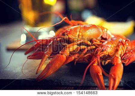 Boiled red crayfish or crawfish with a beer and herbs on a slate table. Close up. Crayfish party