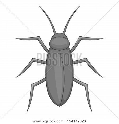 Cockroach icon. Cartoon illustration of cockroach vector icon for web