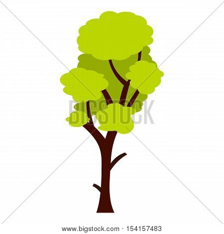 Tall green tree icon. Flat illustration of tall green tree vector icon for web