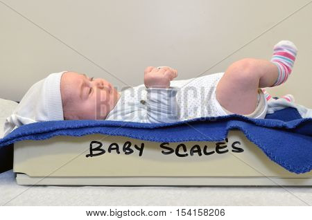 Newborn Baby Been Examined On The Balance