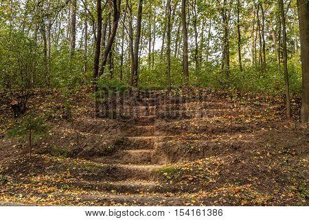 Stairs Dug Earth