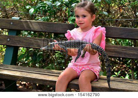 Young Baby Australian Salt Water Crocodile