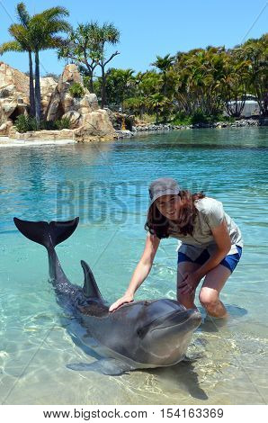 Woman Interact With Dolphin