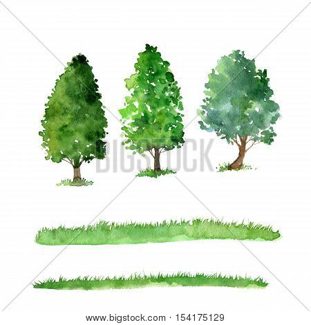 set of trees drawing by watercolor, bushes and grass, green green foliage, isolated natural elements, hand drawn illustration