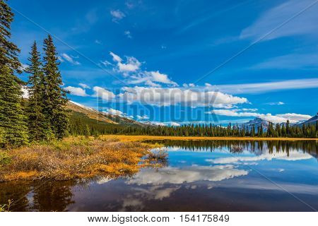 Swamp in the valley of the Rocky Mountains. Clouds are reflected in smooth water. Autumn in Canada. The concept of ecotourism