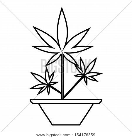 Hemp in pot icon. Outline illustration of hemp in pot vector icon for web