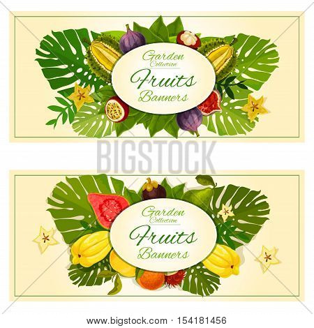Tropical garden fruits banners with vector carambola, mangosteen, durian, figs, guava, rambutan and tropical plant palm leaves elements. Fruit decoration placards