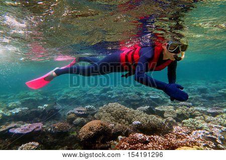 Woman Snorkeling Dive